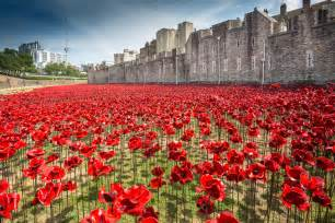 launch of poppies at the tower combat stress