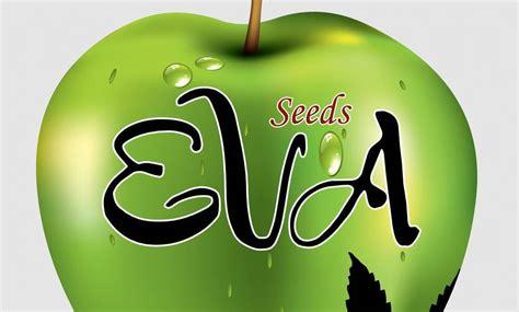 bancos de semillas de marihuana seeds