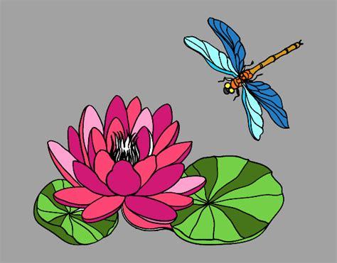 fiori di loto disegno fiore di loto colorato da utente non registrato il
