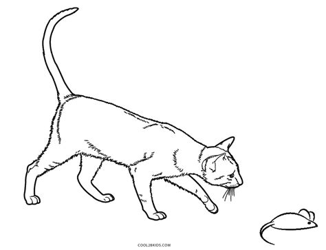 cat coloring pages online free free printable cat coloring pages for kids cool2bkids