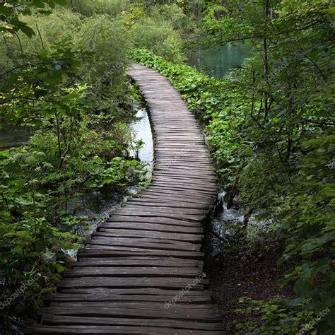 foto in legno passerella in legno sul lago foto stock 169 tverdohlib