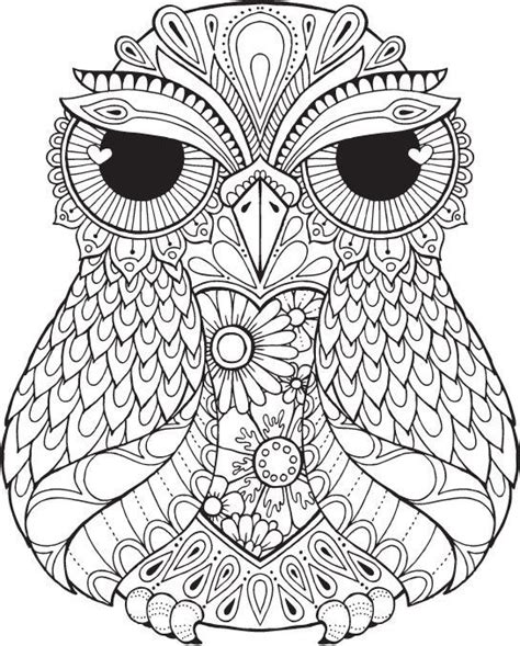 intricate owl coloring pages lana owl colour with me hello angel coloring design