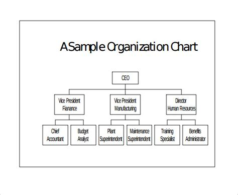 sle basic organization chart 17 documents in word pdf