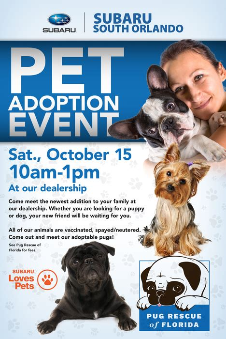 puppy adoption orlando meet the newest member of your family at subaru south orlando s pet adoption event