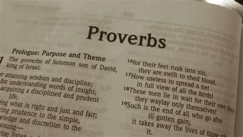 the book of albanian sayings cultural proverbs books what the book of proverbs has to say to us of the times in