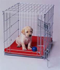 5 must know tips for crate training your puppy