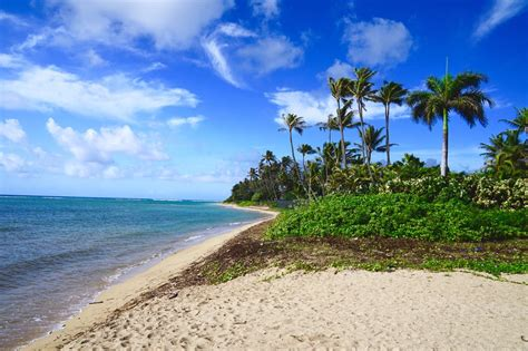 8 Beaches You To Visit by The 8 Best Beaches In Honolulu To Visit This Summer