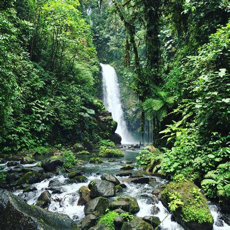 La Paz Waterfall Gardens Costa Rica by La Paz Waterfall Gardens In Costa Rica Oc 3024x3024