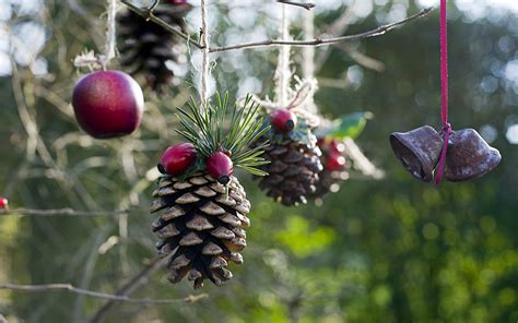 Hgtv Home Design For Mac by Homemade Outdoor Holiday Decorations Made From Natural