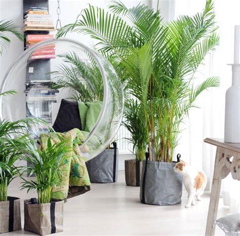 Hangende Planten Binnen by Kamerplanten Trends Passie4wonen Nl