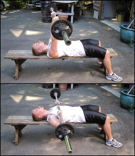 bench press strength training free weight training exercises