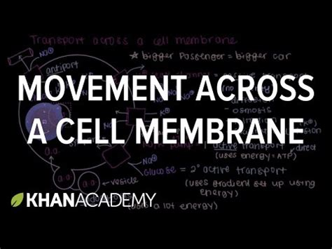 move   cell membrane cells mcat