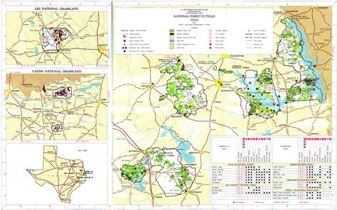 texas national forest map texas national forests and grasslands map paint rock texas mappery