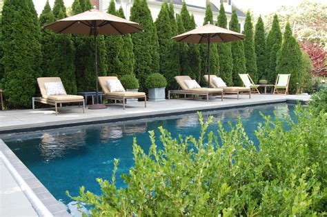 Best Coffee Tables For Small Living Rooms - privacy amp screening traditional pool new york by cording landscape design