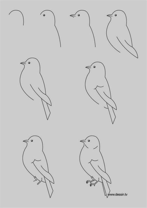 40 easy step by step drawings to practice bored