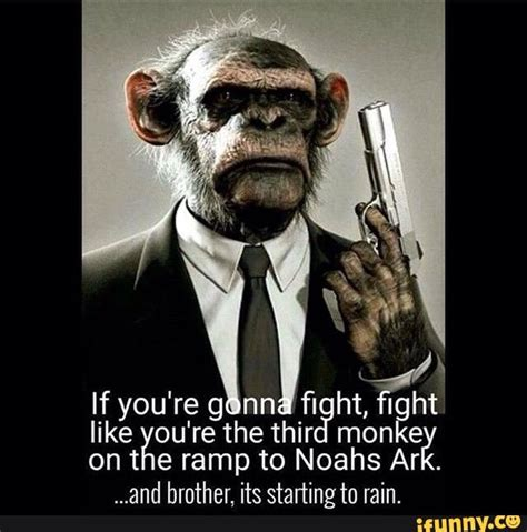 Bad Ass Meme - 121 best 11 bravo images on pinterest funny images