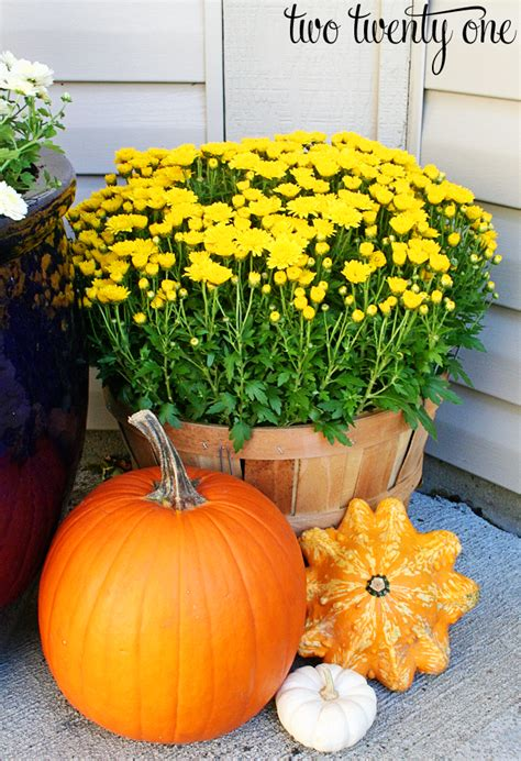 pumpkin displays fall decorating decorating for fall porch decorating