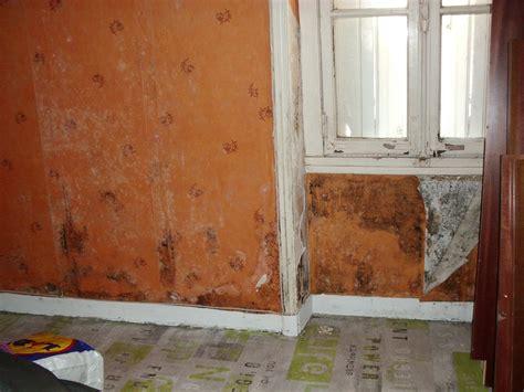 mur humide traitement que faire contre la condensation traitement murs humides