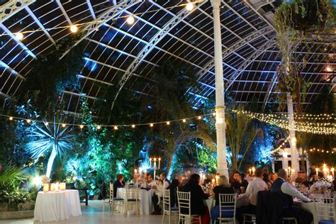 palm house new year s eve wedding at sefton park palm house liverpool