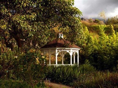 Kula Botanical Gardens Weddings At Kula Botanical Gardens