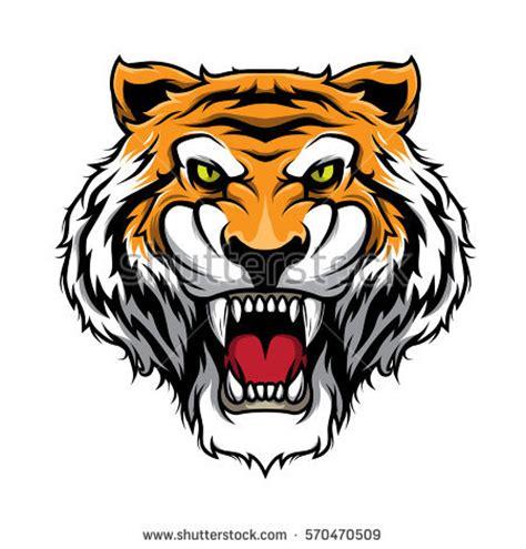 Tshirt Amazing Sumatera tiger stock images royalty free images vectors