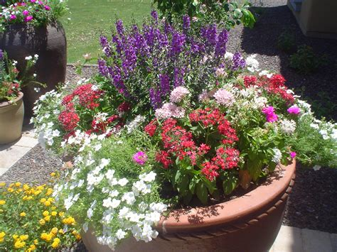 beautiful container gardens container gardens