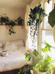 Bedroom Plants moon to moon white walls and house plants