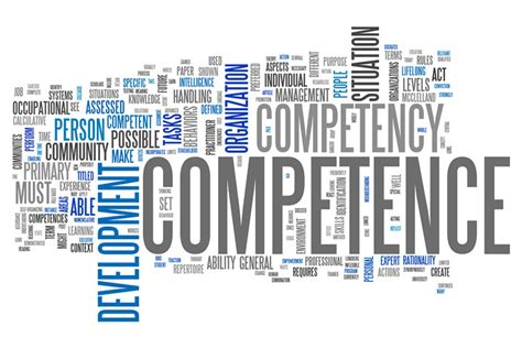 performance evaluation sles measuring competencies in performance evaluation