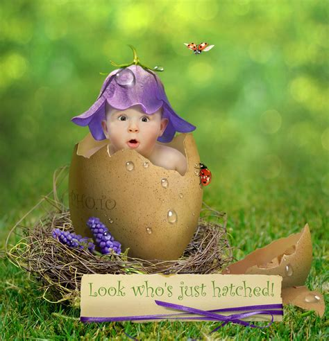 Can You Use New Look Gift Cards Online - just hatched make new baby announcement card online