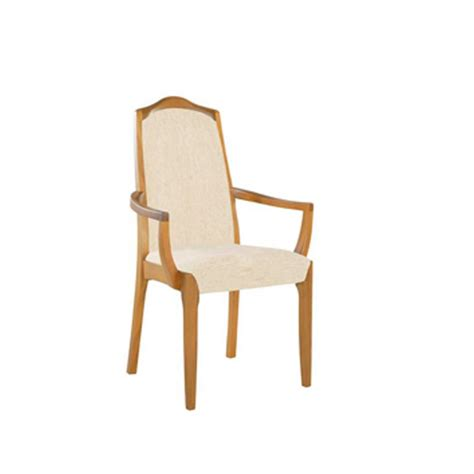 Padded Dining Room Chairs upholstered dining room chairs 187 home decorations insight