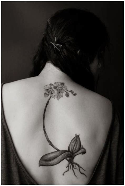 simple back tattoo design orchid tattoo designs orchid tattoo meaning orchid