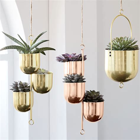 cactus home decor these cactus home decor buys are simply succulent