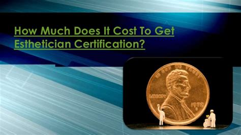 how much does it cost to get a couch cleaned how much does it cost to get esthetician certification