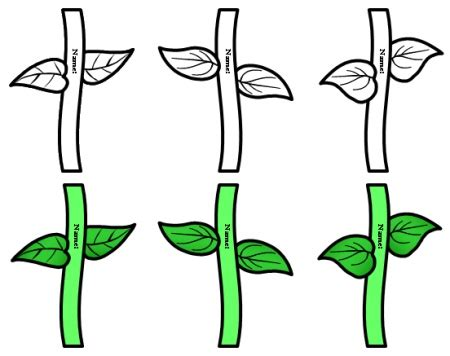 flower stem template cliparts co