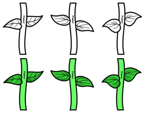 flower stem template flower stem template cliparts co