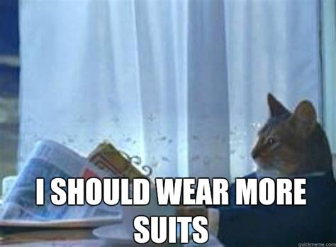 Cat In Suit Meme - i should buy a boat cat memes quickmeme