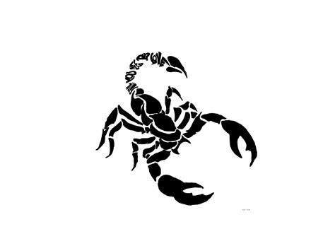 scorpion design tattoo scorpions drawings for