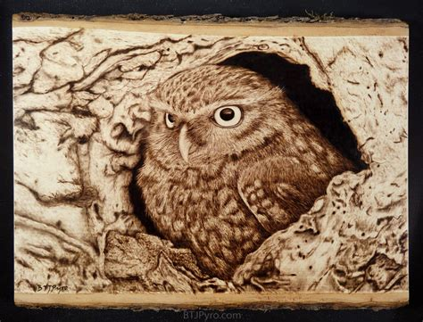 wood burning templates free owl woodburning by brandojones on deviantart