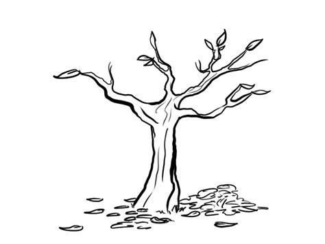 imagenes de arboles otoñales para pintar 193 rbol y hojas dibujos para colorear