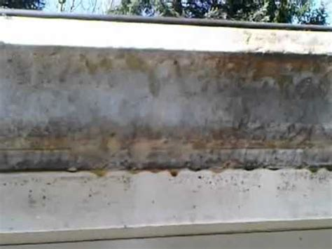 tiger gutters and siding mold and mildew removal from siding and gutters eric s