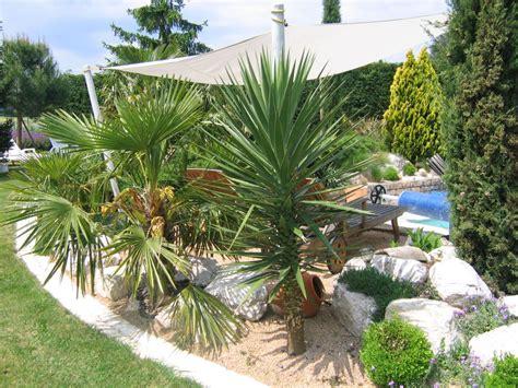 Quel Arbre Planter Proche D Une Maison by Autour De La Piscine Par Jcgb Au Jardin Forum De Jardinage