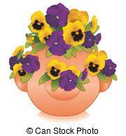 viole pensiero in vaso viola viola pensiero fiori oro hortensis oro