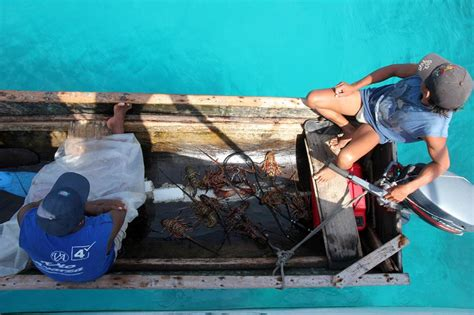 lobster boat docking sailing to colombia via the san blas islands