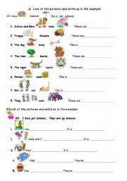 esl worksheets for beginners possessive adjectives