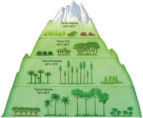 Definition Landscape Climate Geography Glossary Semester 1
