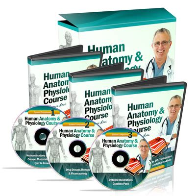 Human Anatomy And Physiology Course Review Learn How To