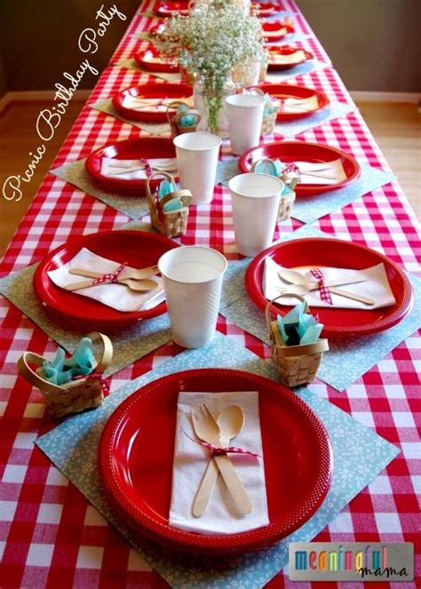 Barn Animal Party Supplies 25 Best Ideas About Kids Picnic Parties On Pinterest