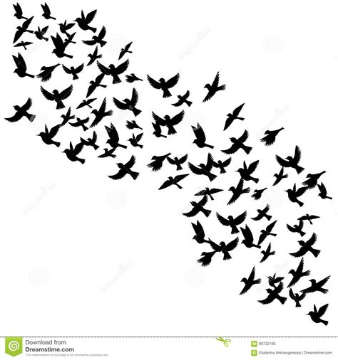 vector flying birds silhouettes stock vector