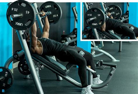 shoulder warm up for bench press bench press warm up 28 images bench press more weight