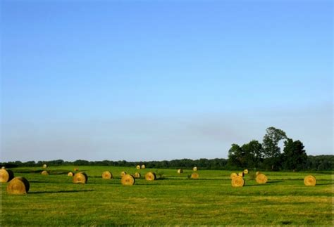 hay field farm free stock photos in jpeg jpg 3636x2486